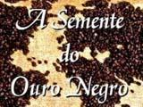 A SEMENTE DO OURO NEGRO